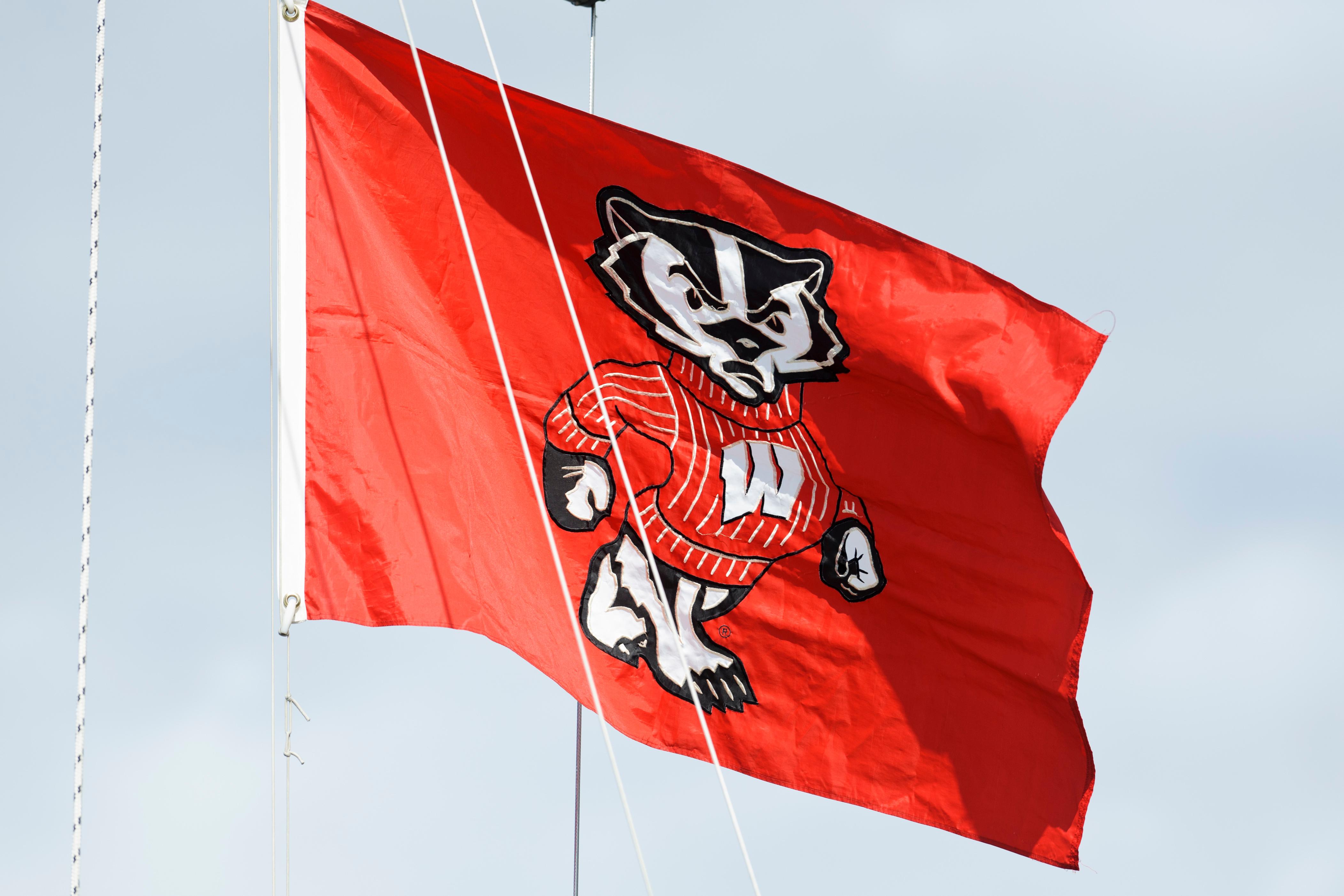 Bucky Badger flag